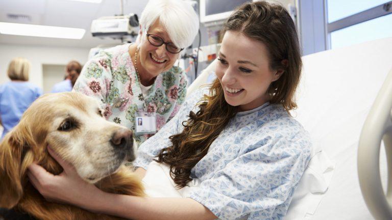 Pet Therapy, il primo progetto di cani in corsia per i malati di Sla
